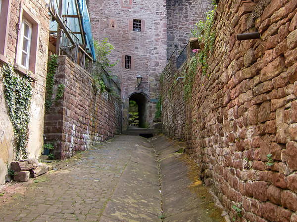 Uphill from the Schnatterloch is this gate in the wall, leading (east) an overlook and (west) to Mildenberg castle.