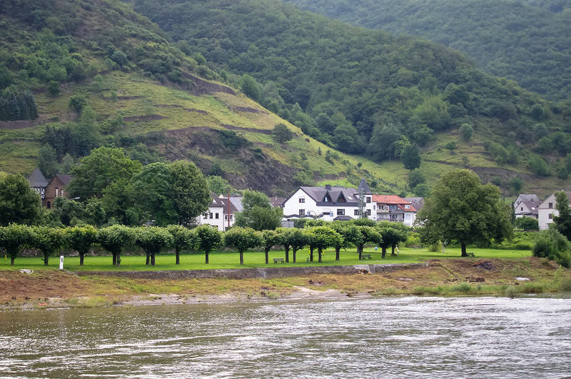 Wednesday, July 18.  The day began cruising the Rhine between Bonn and Koblenz.  Plain has given way to hills.  This park is near the town of Brohl-Lützing.