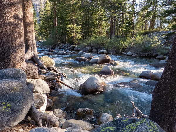 """I stayed at the """"campground"""" where the Piute Creek trail meets the JMT.  The site was nondescript, but this fine stretch of Piute Creek was very close."""