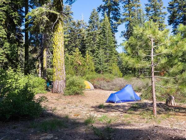The lower portion of our campsite.