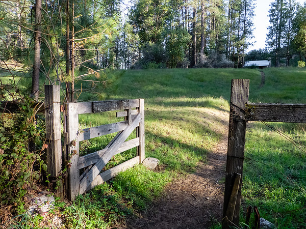 Into the fenced portion of Pine Valley on the Carmel River Trail.  This morning, I will day hike down to the Round Rock Camp, about a 9 mile round trip.