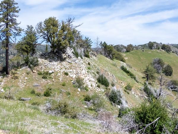 On the Pine Ridge Trail.