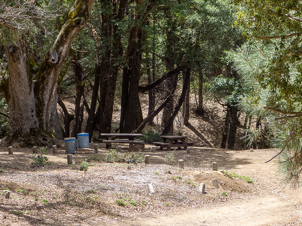 Before hitting the trail, lunch was at the China Camp Campground.  Nobody here.