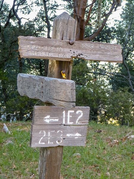 The Comings Camp junction.  All the signs were here in 2006, but only the 1E2/2E3 sign was on this post.