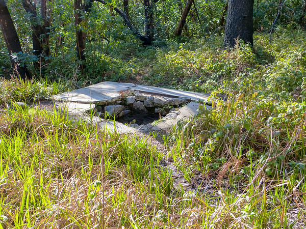 The Comings Camp cistern.  Dubious water. Good water was in the creek 200 feet ahead.