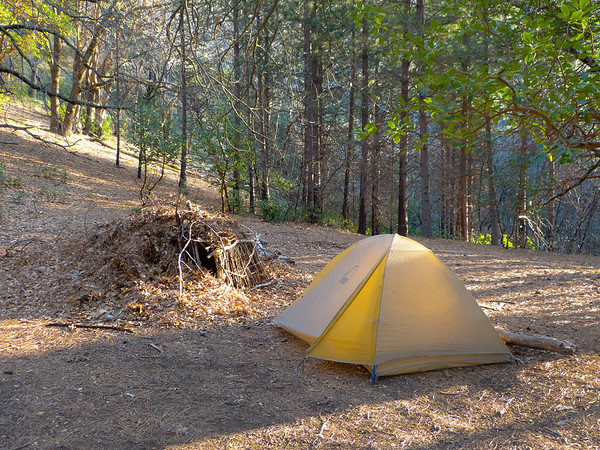 Saturday, March 3.  Comings Camp.  The Basin Fire cleaned out some of the small madrones and pines, but the larger trees seemed fine.