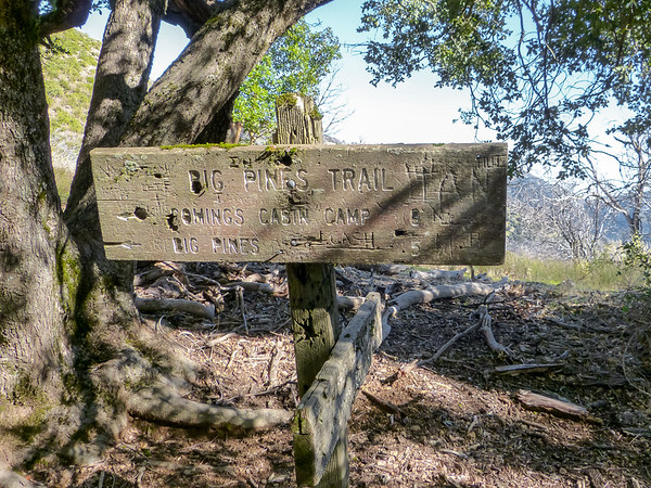 The old sign at the Turner Creek Saddle is still there.