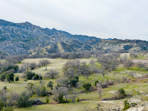 The view down to the oak savannah and toward the ridge that marks the divide between the North Fork and Arroyo Seco drainages.