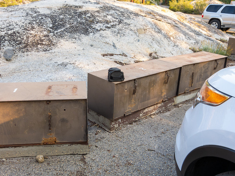 Tuesday, August 6.  The day began with near disaster.  I couldn't find my camera at the campground.   Last night I had Ieft it on a bear box in the Ferry parking lot.  It was still there in morning.