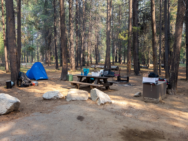 Monday, August 5.  Alex and I drove up to the Jackass Meadow Campground, near Florence Lake.