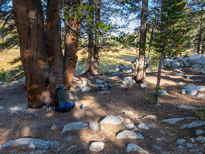 Thursday, August 8.  Packing up at our McClure Meadow camp.