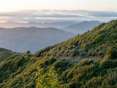California Coast Range