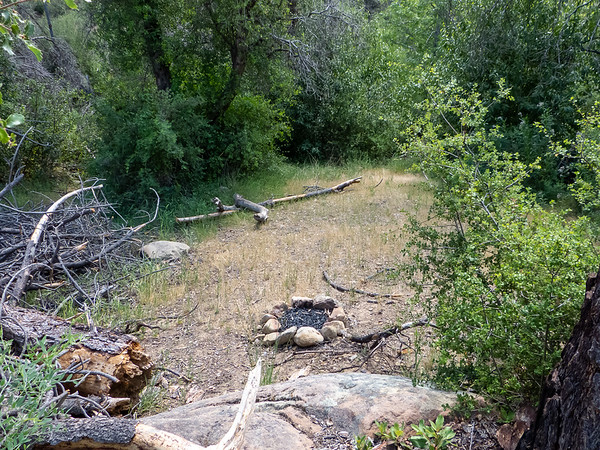 False Forks Camp is just a rough opening in trees and brush.