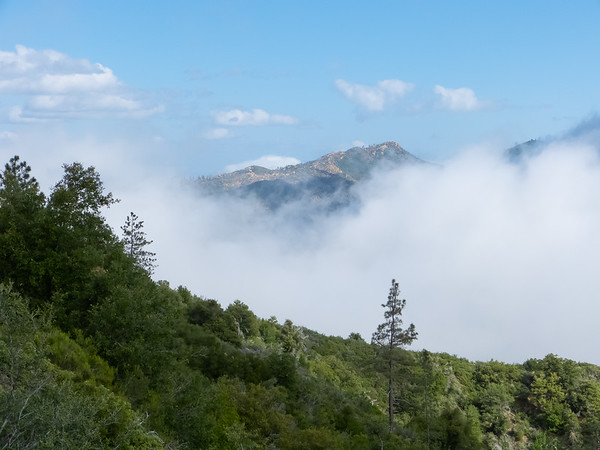 More low clouds.