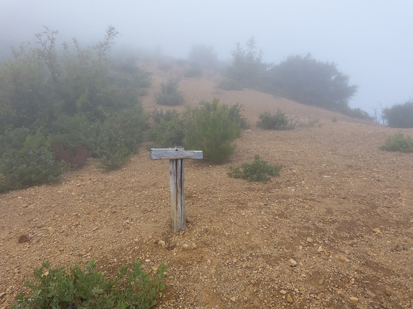 The junction between the Coast Ridge Trail and the Rodeo Flats Trail.  Bad visibility ... and it got worse.