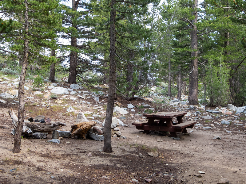 Monday, July 1.  I set up at the Tuolumne Meadows backpacker's camp and went exploring. I scouted the Warren Walk-in Campground.