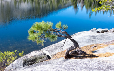 Yosemite: Lake Vernon Loop- May 2013