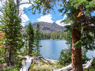 Grandaddy and Four Lakes Basins