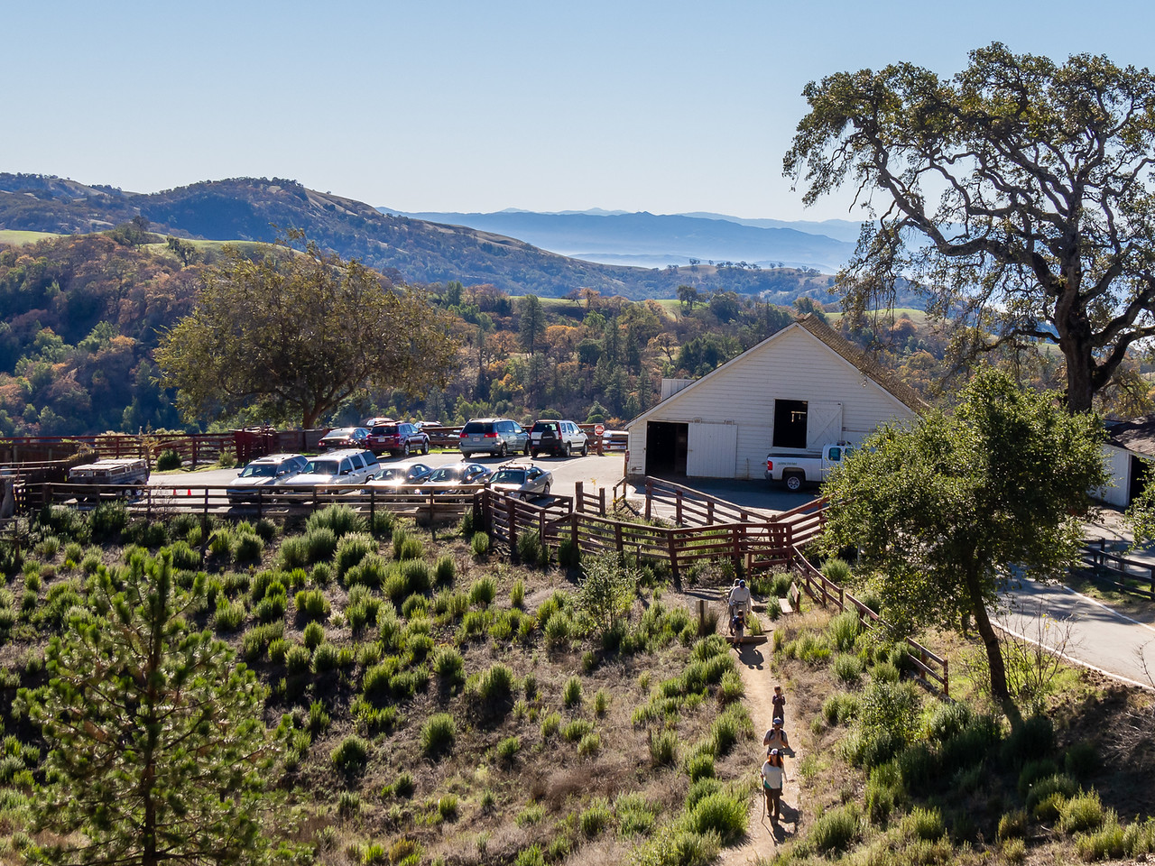 The Coe Ranch trailhead was hopping today.  Clear up here but a little haze down in the upper Santa Clara Valley below.