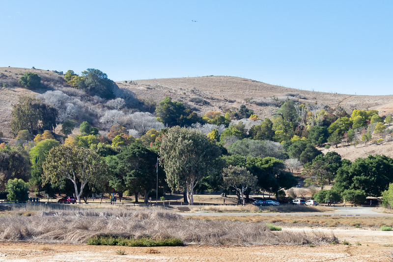 The Coyote Hills visitor center area.  A few green trees (many planted, although natives) and lots of gray/brown grassy hills.