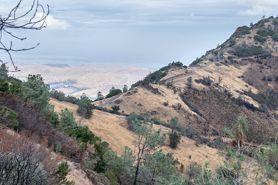 Mt Diablo: One Year after the Morgan Fire - Sept 28 2014