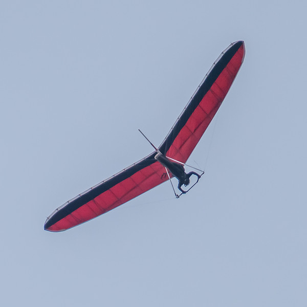 And then there were the hang gliders.  There were four all told, of three designs.  The red design.