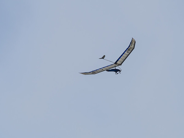 Then there were the hang gliders.  Several were out.