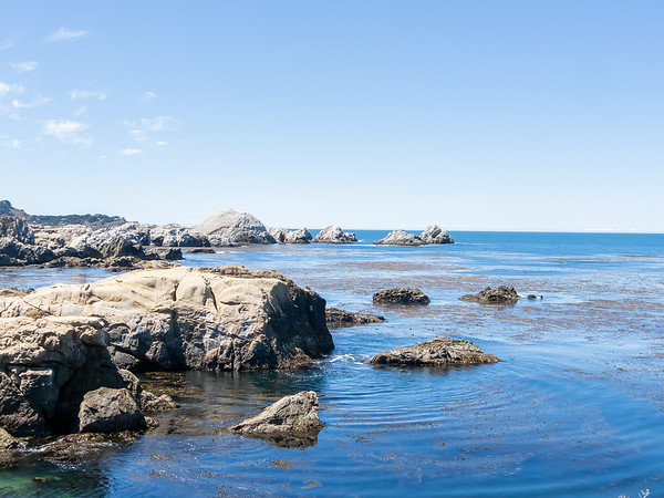 Now over to Pt. Lobos.  Like last year, I spent time over at Bird Island.  Unlike last year, it's sunny.