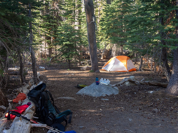 Camp was about a mile on at Clover Creek.  There are two camps down here, maybe 1/10 mile apart.  This is the farther one.   Not a glorious camp: just a just an opening in the somewhat scraggly white fir forest with my camp gear littered about.