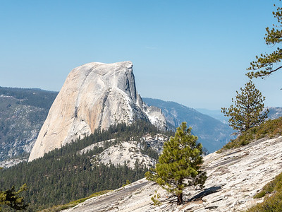 Yosemite: LYV and Beyond - April/May 2014