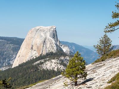 Yosemite: LYV and Beyond- April/May2014