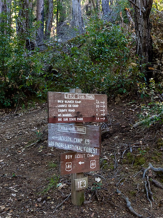The Little Sur Trail is marked by this amazing collection of signs.