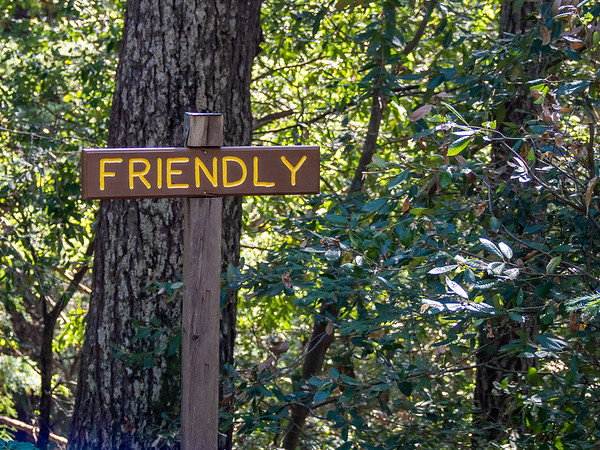 As I approached the Scout camp there were all these signs from the pieces of the Scout Motto.  I guess I can be friendly with tan oaks.