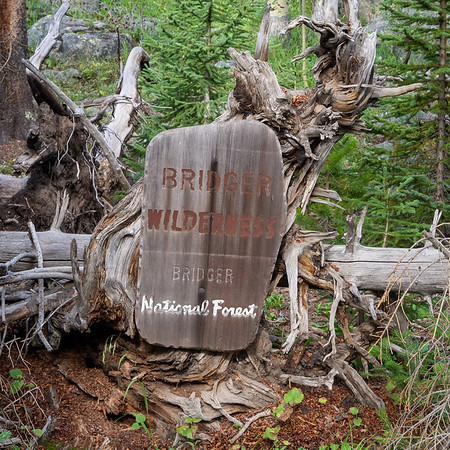 This was the only traditional wilderness sign I saw on the trip.