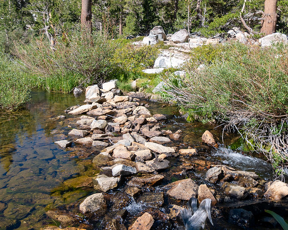 Crossing the South Fork of Woods Creek.