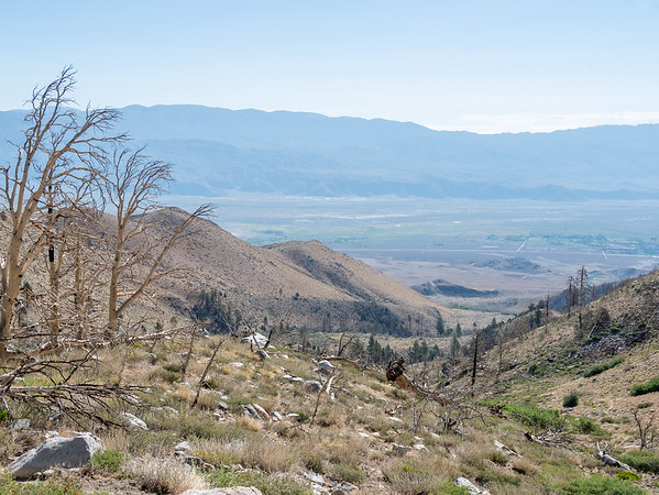 The view down from 7,500' is not that different than the earlier ones, although small shrubs and grasses have replaced the sagebrush.  Lots of burned out trees.  The trailhead is that green patch a the center right.  Zoom to see the car park and a car.