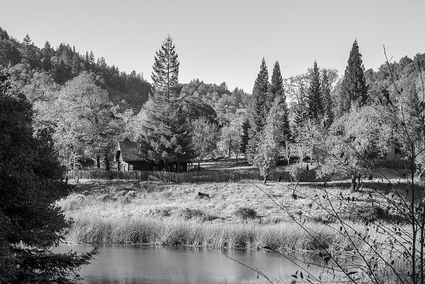 Phoenix Lake's 1893 log cabin, built for the Hyppolite (Porteous) Ranch.  It was restored by the water district in 1989.  This shot was too much into the sun so the colors are kind of iffy.  Let's try it in black-and-white.