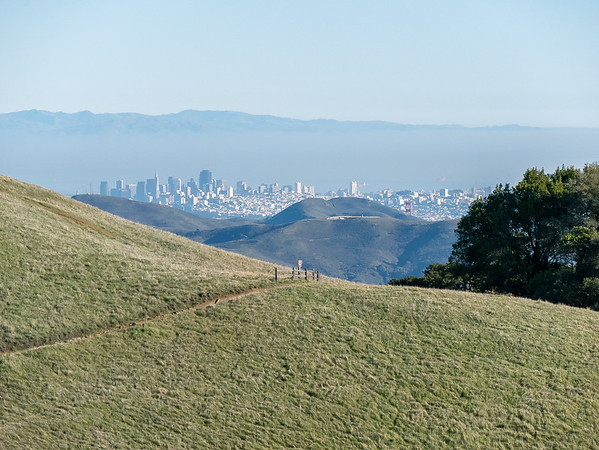 San Francisco and the very top of the Golden Gate Bridge from near Rock Spring.