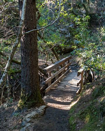 Trail bridge.