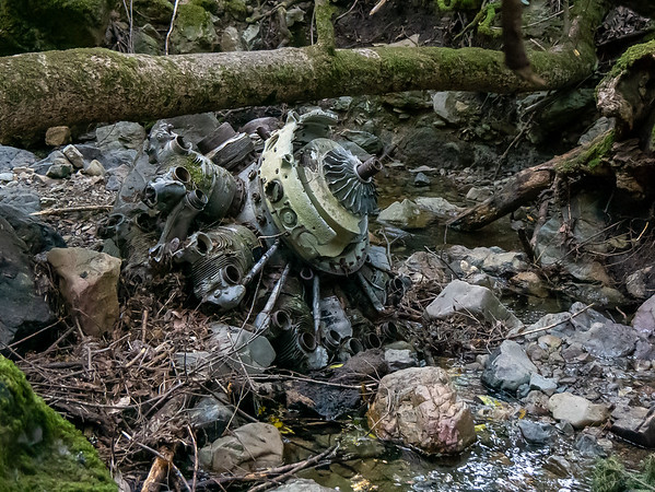"""Onto the Laurel Dell area.  """"Aeronautic Erratic"""".  WWII-era fighter engine from an October 1945 crash, just sitting in Cataract Creek about 150 feet south of the Ray Murphy Bridge.    (On the web I learned this is a Pratt & Whitney R-2800 engine from a Corsair F4U-1D.)"""