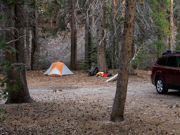 Wednesday, August 12.  I spent the first night just out in the woods a few miles from Mammoth Lakes. The road toward Inyo Craters had what was obviously a regularly-used informal campsite.   I did meals in town.   The Perseid meteors put on a nice show.
