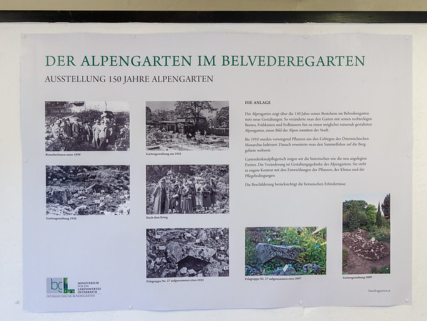Exhibition of the 150 year alpine garden -- The site.