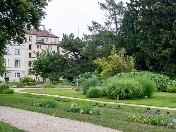 The garden has the expected display plots and specimen plantings.   While not on most tourist's top-ten list, this garden is a historic place.  It dates to 1754.  It was established by Maria Theresa.