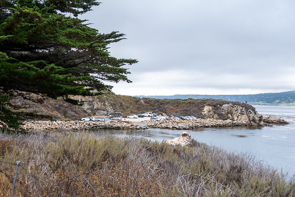 The bulk of the whaling station was on the flat where the parking lot stands today.