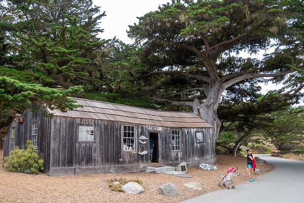 The Whaler's Cabin Museum.