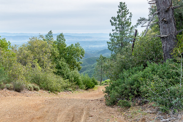 Today's next segment consists of about three miles south on the South Coast Ridge Road.  This is the view from the top of hill by the car.
