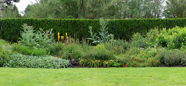 The big perennial bed: one small piece of an enormously long spread.
