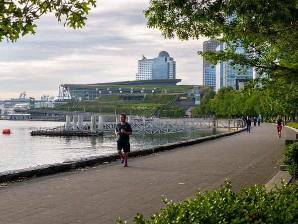 Wednesday, June 22.  In the mornings, before breakfast, I went out for a walk.  Today (and all but one of the mornings), I went down to the waterfront about 1/2 mile away.  There's a walkway along the water, the Convention Centre behind ...