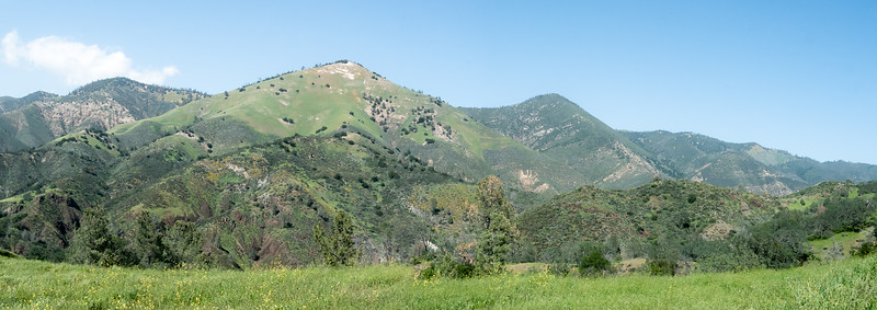 The view from near those mariposa lilies.  The mountains are a little closer than earlier: you can just see a few fields of orange poppies up top.  (A larger panorama-viewer version is at the bottom of this gallery page.)