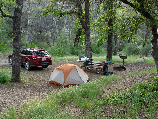 Davy Brown Campground.